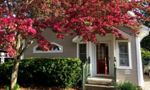 red flowering Crabapple tree shades the front porch